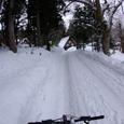 圧雪サイクリング