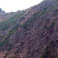 地蔵尾根の登山道