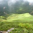 中岳北壁の緑