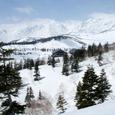 栂池自然園と白馬大雪渓