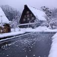 雪のたんぼ