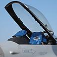 F-16コクピットはカバーされてる