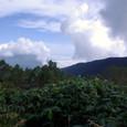 飯縄山からの霊仙寺山と黒姫山