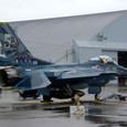 F-2A 50周年記念塗装機