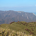 北側の藤原岳