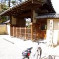 東大寺から興福寺へ